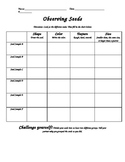 Observing Seeds worksheet