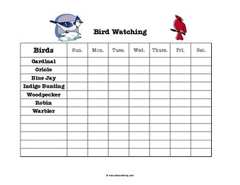 Montessori Backyard Birds 3 Part Cards and Bird Watch