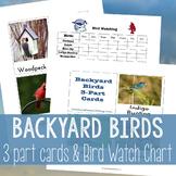 Montessori Backyard Birds 3 Part Cards and Bird Watch