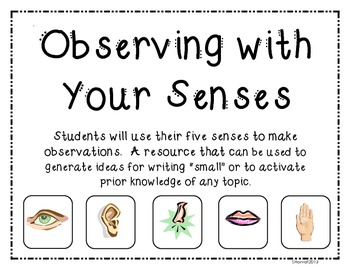 Observing with your Senses