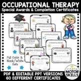 Occupational Therapy Services Completion Certificate