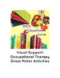 Occupational Therapy: Visual Gross Motor Support