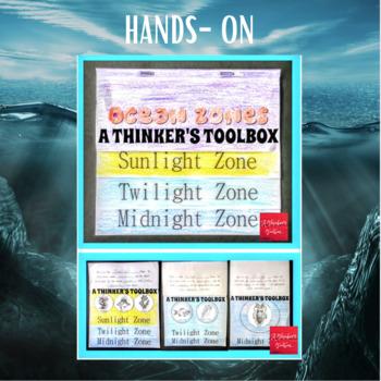 Ocean Zones Activities (Mini Reader, Flip Book, & Handout)