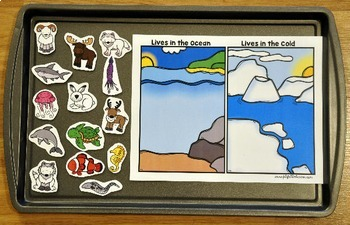 "Ocean Adapted Book And Vocabulary Activities:  ""Who Lives in the Ocean?"""