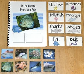 "Ocean Adapted Book--""In the Ocean"" (w/Real Photos)"