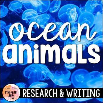 Ocean Animals Research & Writing