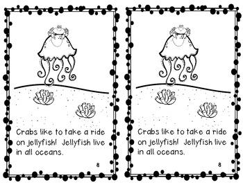 Ocean Animal Book Study