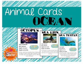 Ocean Animal Cards