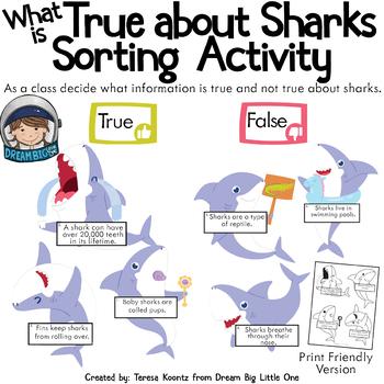 Ocean Animal Circle Time Activities for Preschool and Kindergarten