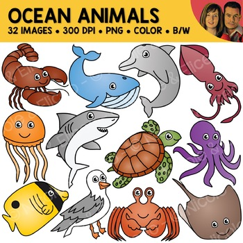 Ocean Animal Clipart