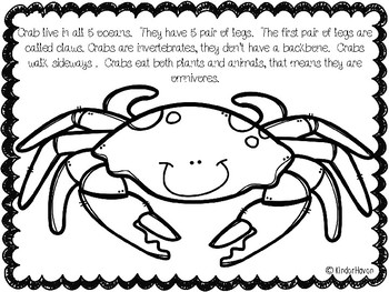 Ocean Animal Coloring and Fact Book