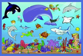 Image of: Jellyfish Teachers Pay Teachers Ocean Animal Facts By Mindy Eschenburg Teachers Pay Teachers