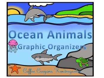 Ocean Animal Graphic Organizers