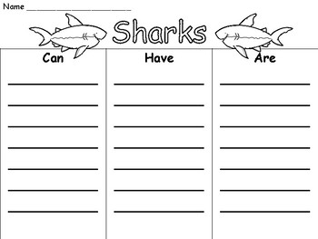 Ocean Animal Graphic Organizers and Writing Pages