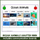 Ocean Animal Interactive / Adapted Book for Special Needs