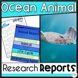 Ocean Animal Passages