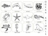 Ocean Animal Pictures PECS