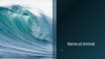 Ocean Animal PowerPoint Research