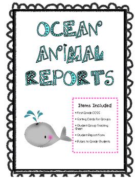 Ocean Animal Report
