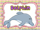 Ocean Animal Reports- Informational Non-Fiction Report Writing