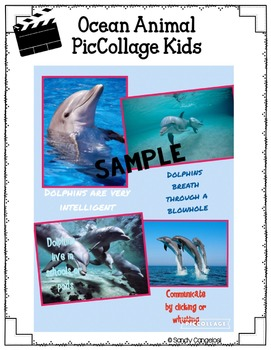 OCEAN ANIMALS -  Inquiry Project, Research, Google™ Slideshow, and Activities