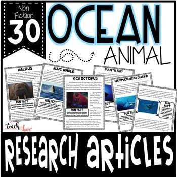 Ocean Animal Research Bundle