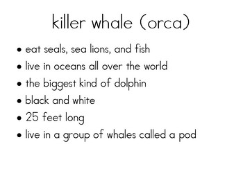Ocean Animal Research Cards