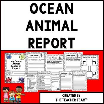 Ocean Animal Research Report