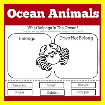 Ocean Animal Worksheet | Ocean Animal Activity | Ocean Animal Cut and Paste