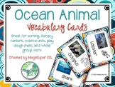 Ocean Animal Vocabulary Cards