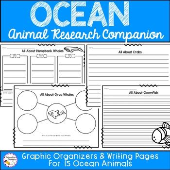 Ocean Animal Research Activities