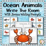 Ocean Animals Kindergarten