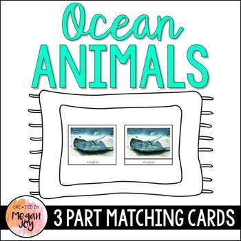 Ocean Animals 3 Part Cards