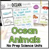 Ocean Animal Facts and Habitat