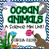 Ocean Animals- A Science Unit