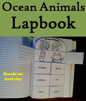 Ocean Animals Activity: Interactive Notebook Foldable/ Coloring Book
