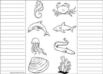 Ocean Animals Activity Interactive Notebook Foldable Coloring Book
