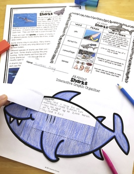 Ocean Animals Reading: Differentiated Sharks Reading Passages & Comprehension