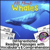 Ocean Animals Reading: Whales Differentiated Reading Passages & Comprehension