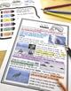 Ocean Animals Reading: Whales Differentiated Reading Passa