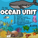 Ocean Animals BUNDLE (250 pages!!)