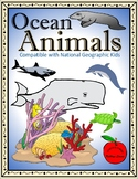 Ocean Animals BUNDLE / Compatible with National Geographic Kids