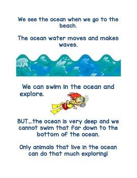 Ocean Animals Book