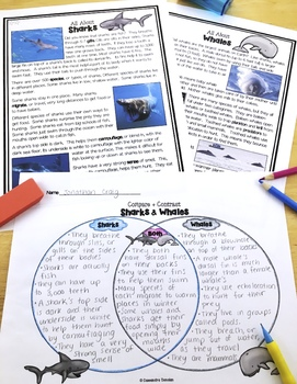 Differentiated Ocean Animals Reading Passages & Comprehension *The Bundle*