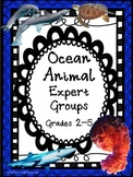 Ocean Animals: Expert Groups (CCSS aligned)