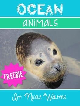 Ocean Animals {FREEBIE}