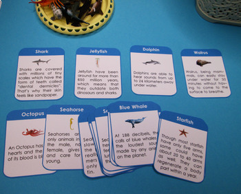 Ocean Animals Fact Cards