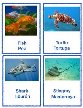 Ocean Animals Flashcards (English and Spanish)