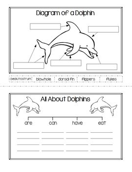 Ocean Animals Flip Books, Interactive Science Journal: Explore Classifications