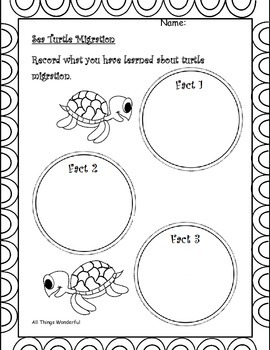 Ocean Animals Graphic Organizers and Booklet with QR Codes
